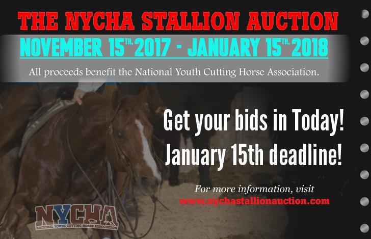 Stallion-Auction-728x469